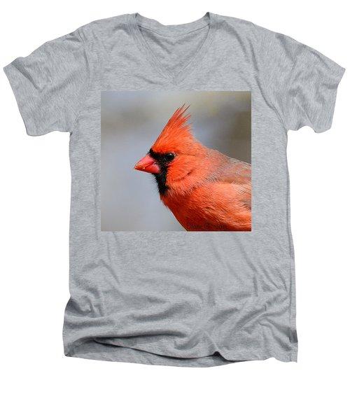 Male Cardinal Men's V-Neck T-Shirt by Diane Giurco