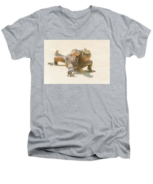 Men's V-Neck T-Shirt featuring the photograph Marine Iguana On Galapagos Islands by Marek Poplawski