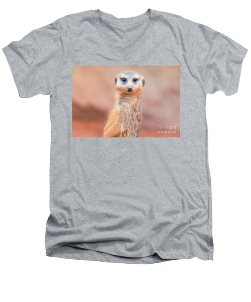 Meerkat Men's V-Neck T-Shirt