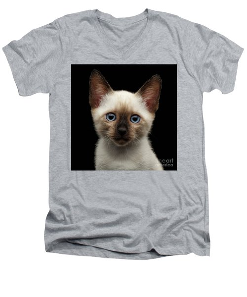 Mekong Bobtail Kitty With Blue Eyes On Isolated Black Background Men's V-Neck T-Shirt