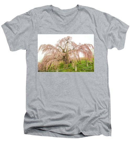 Miharu Takizakura Weeping Cherry02 Men's V-Neck T-Shirt by Tatsuya Atarashi