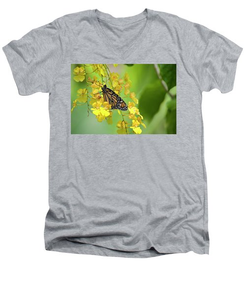 Monarch Butterfly On Yellow Orchids Men's V-Neck T-Shirt