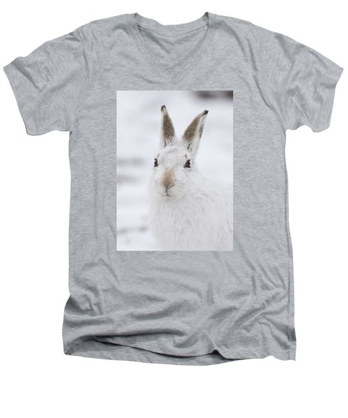 Mountain Hare In The Snow - Lepus Timidus  #1 Men's V-Neck T-Shirt