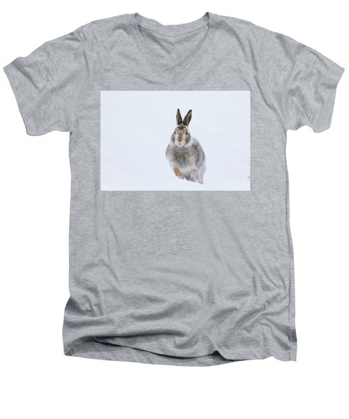 Mountain Hare - Scotland Men's V-Neck T-Shirt