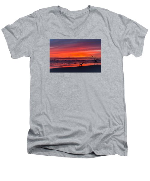 Men's V-Neck T-Shirt featuring the photograph Nature by RC Pics