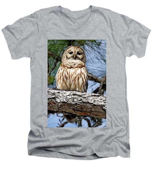 Owl In A Tree Men's V-Neck T-Shirt