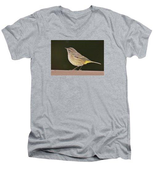 Palm Warbler Men's V-Neck T-Shirt by Alan Lenk