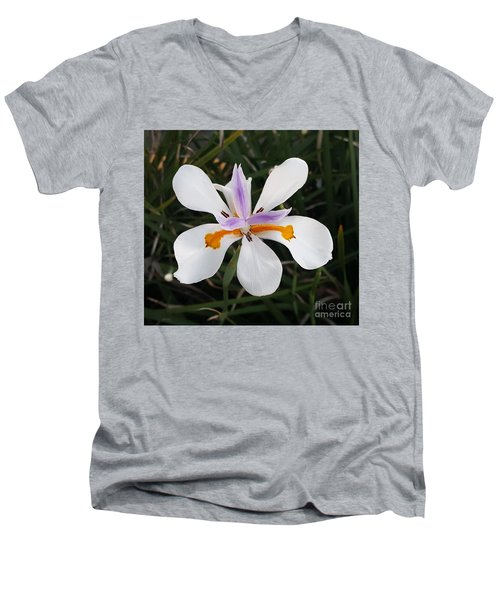 Perfection Of Nature Men's V-Neck T-Shirt