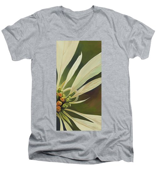 Phenomenal World Men's V-Neck T-Shirt