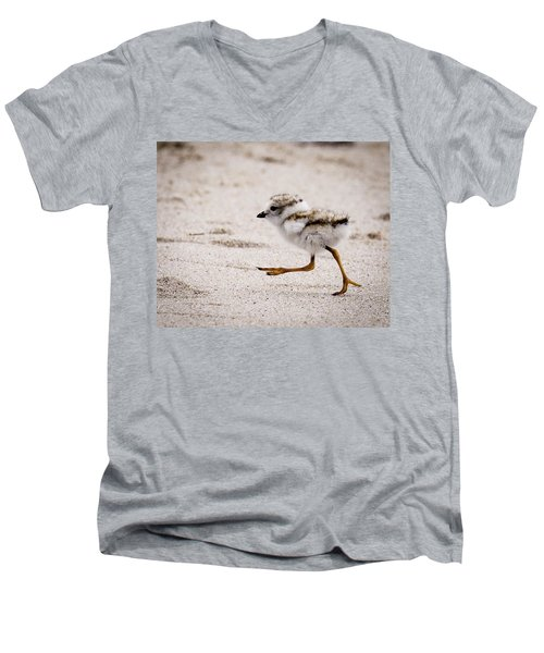 Piping Plover Chick Men's V-Neck T-Shirt