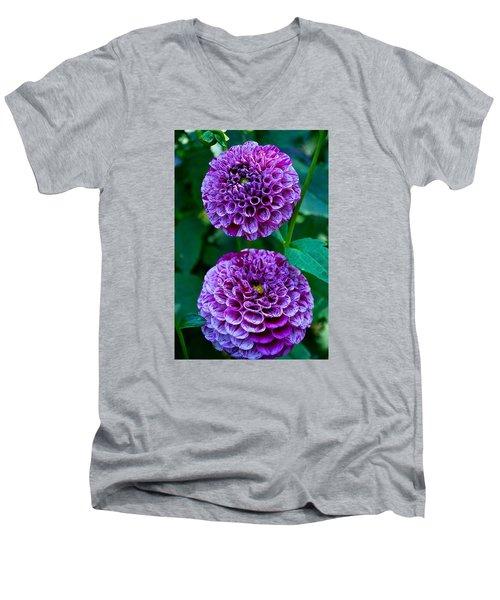 Purple Passion Dahlia  Men's V-Neck T-Shirt