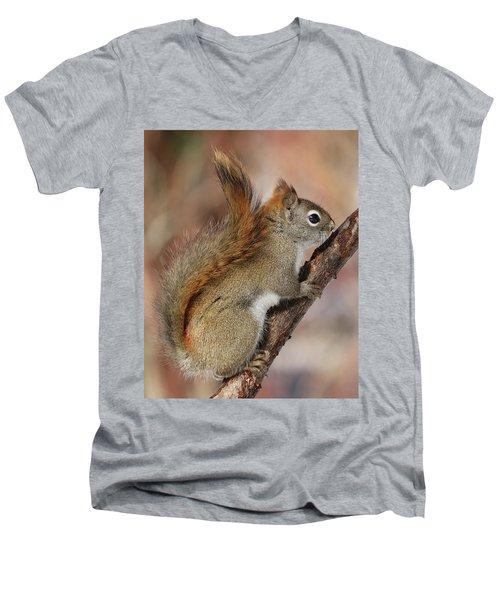 Red Squirrel Men's V-Neck T-Shirt