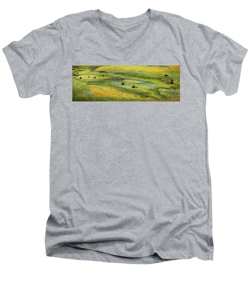 Renaissance Cave Bison Men's V-Neck T-Shirt