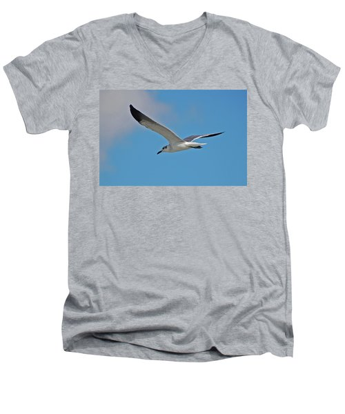 Men's V-Neck T-Shirt featuring the photograph 1- Seagull by Joseph Keane