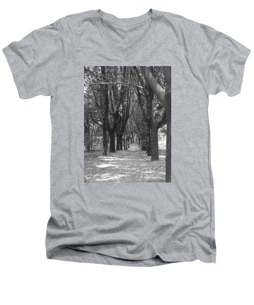 Serenity Men's V-Neck T-Shirt by Edgar Torres