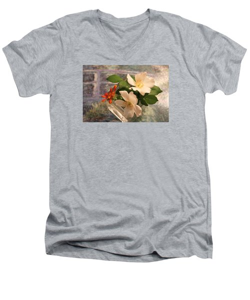 Sharon's Delight Men's V-Neck T-Shirt