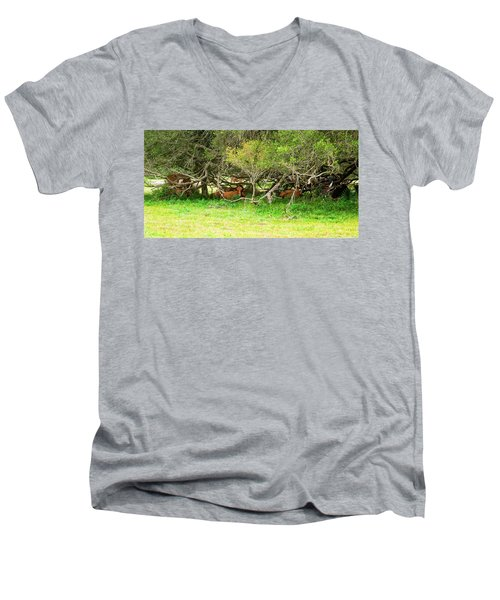 Shelter From The Sun Men's V-Neck T-Shirt