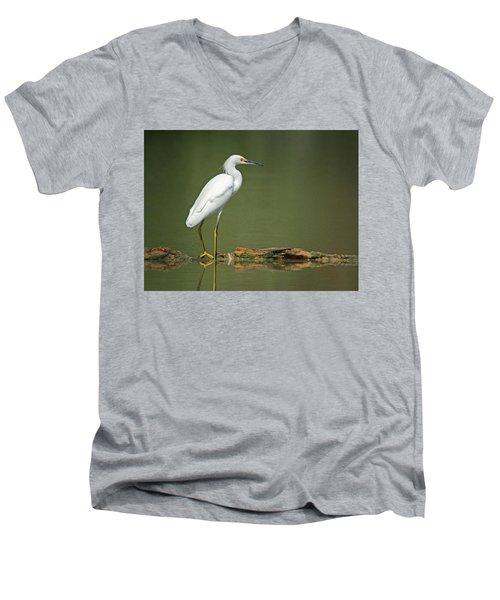 Snowy Egret Men's V-Neck T-Shirt by Tam Ryan