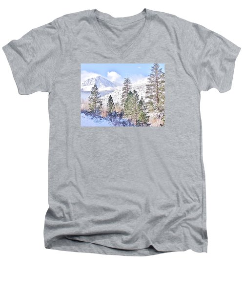Canyon Snow Men's V-Neck T-Shirt