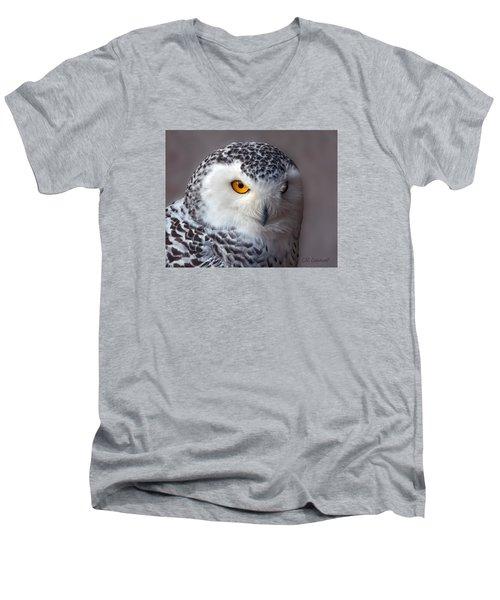 Snowy Owl Portrait Men's V-Neck T-Shirt by CR  Courson