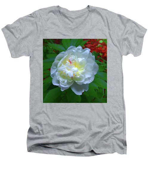Spring Peony Men's V-Neck T-Shirt
