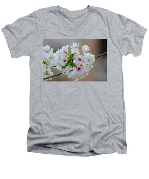 Springtime Bliss Men's V-Neck T-Shirt