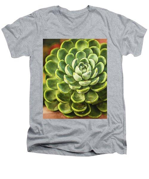Succulent Men's V-Neck T-Shirt