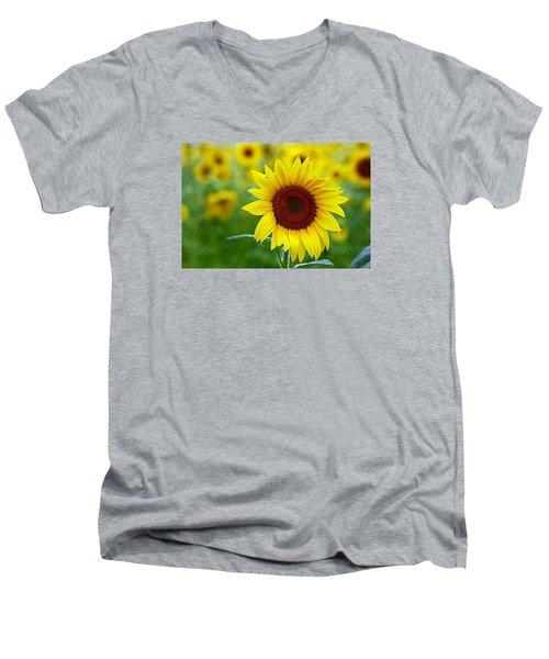 Sunflower Time Men's V-Neck T-Shirt