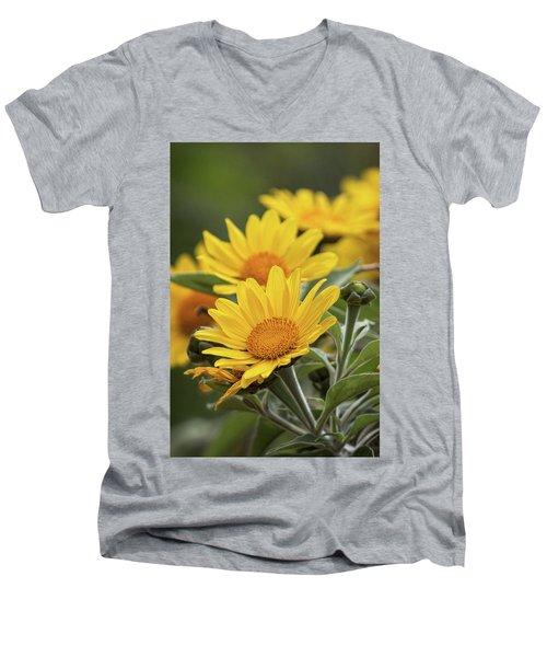 Men's V-Neck T-Shirt featuring the photograph Sunflowers  by Saija Lehtonen