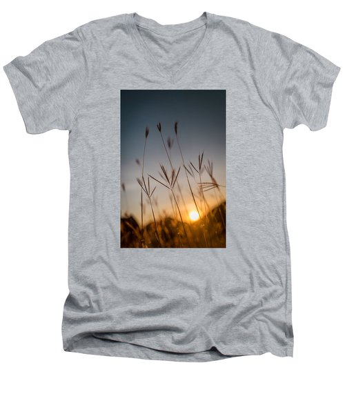 Sunset Grass Men's V-Neck T-Shirt