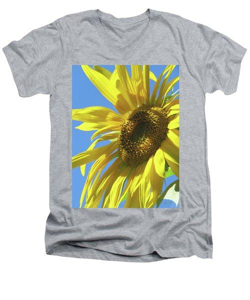 Sunshine In The Garden 28 Men's V-Neck T-Shirt by Brooks Garten Hauschild