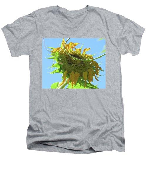 Sunshine In The Garden 32 Men's V-Neck T-Shirt by Brooks Garten Hauschild