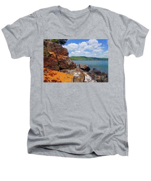 Superior Lichens Men's V-Neck T-Shirt