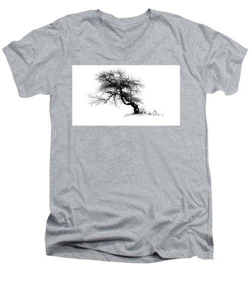 The Apple Tree Men's V-Neck T-Shirt