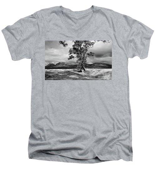 The Cazneaux Tree Men's V-Neck T-Shirt by Bill Robinson