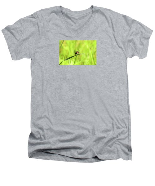 The Fly Men's V-Neck T-Shirt