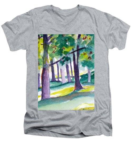 The Perfect Day Men's V-Neck T-Shirt by Jan Bennicoff