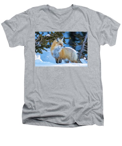 The Snow Beauty Men's V-Neck T-Shirt