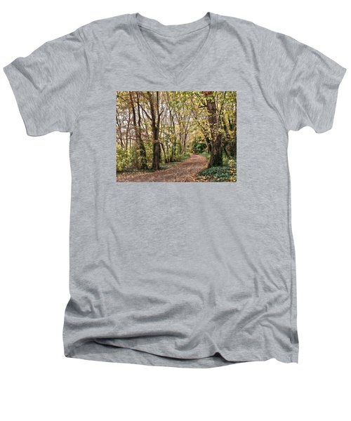 The Woods In Autumn Men's V-Neck T-Shirt by Mikki Cucuzzo