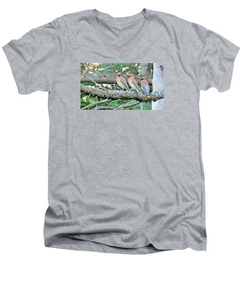 Three In A Row Men's V-Neck T-Shirt by Jeanette Oberholtzer