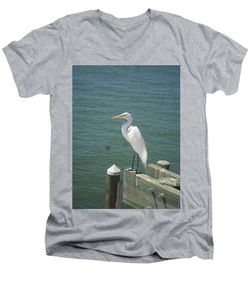 Tranquility Men's V-Neck T-Shirt by Val Oconnor
