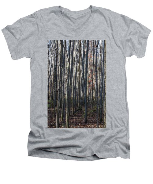 Treez Men's V-Neck T-Shirt