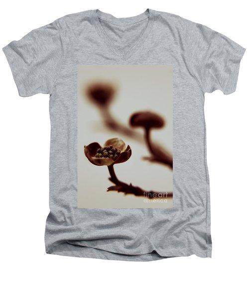 Trilogy Men's V-Neck T-Shirt
