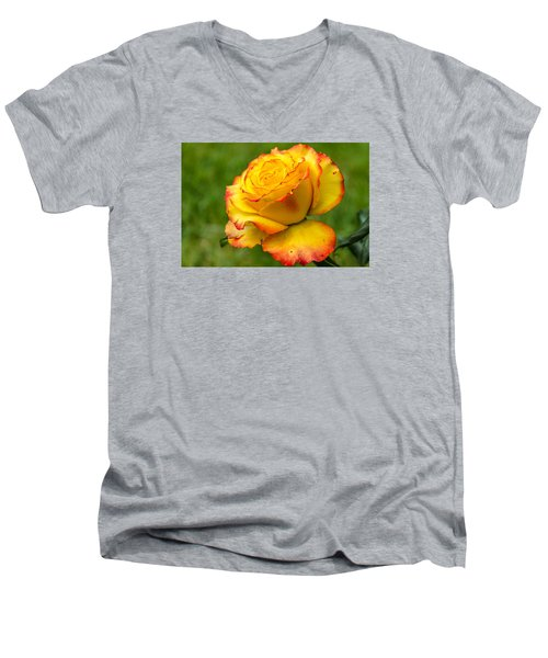 Two Toned Rose  Men's V-Neck T-Shirt by Martina Fagan