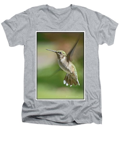 Untitled Hum_bird_five Men's V-Neck T-Shirt