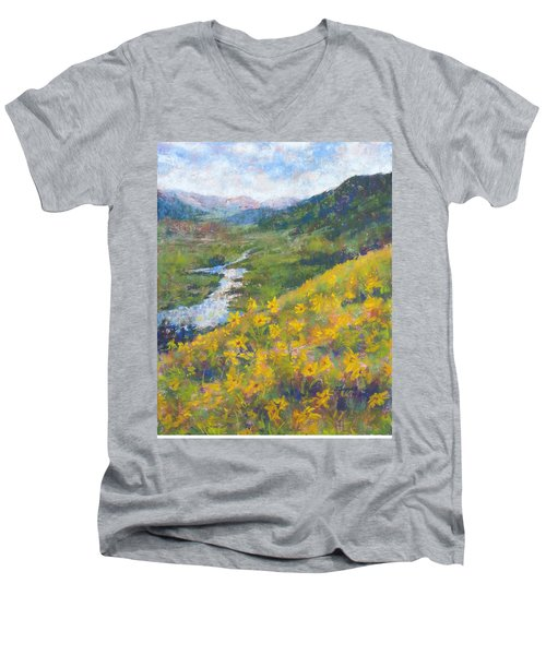 View From Baxters Gulch Men's V-Neck T-Shirt