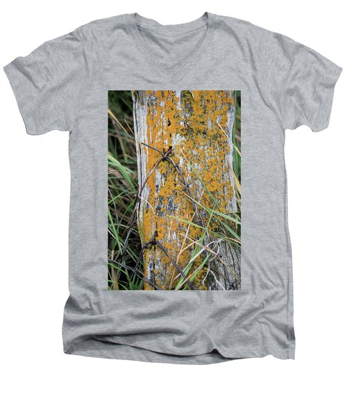 Weathered Fence Men's V-Neck T-Shirt