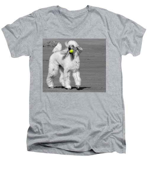 Pedicured Pup Hits The Beach Men's V-Neck T-Shirt