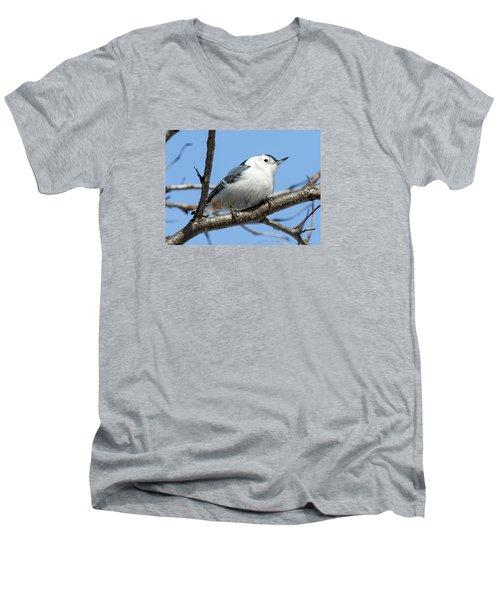 White-breasted Nuthatch Men's V-Neck T-Shirt by Ricky L Jones