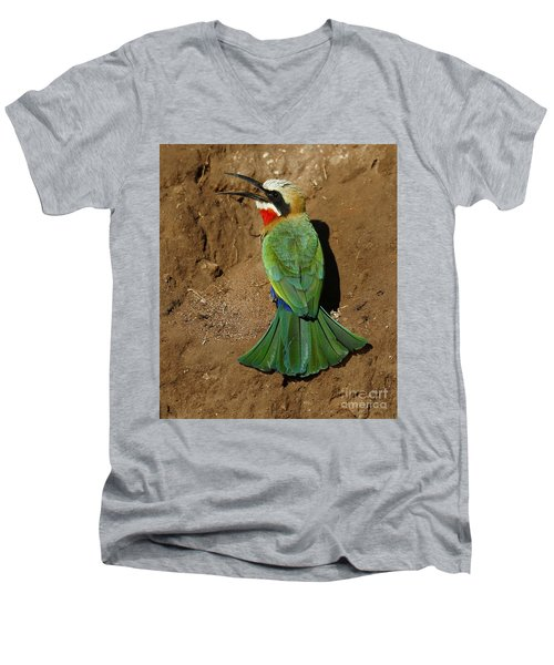 White Fronted Bee-eater Men's V-Neck T-Shirt
